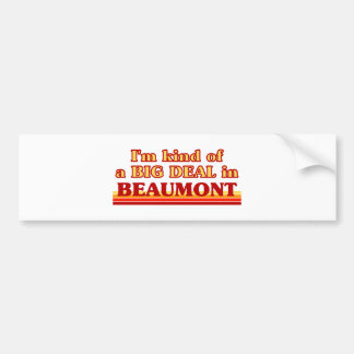 I am kind of a BIG DEAL in Beaumont Bumper Stickers