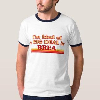 I am kind of a BIG DEAL in Brea T-Shirt