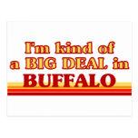 I am kind of a BIG DEAL in Buffalo Postcard