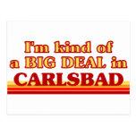 I am kind of a BIG DEAL in Carlsbad Postcard