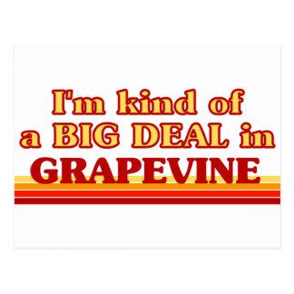 I am kind of a BIG DEAL in Grapevine Postcard