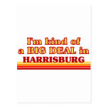 I am kind of a BIG DEAL in Harrisburg Postcard