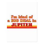 I am kind of a BIG DEAL in Jupiter Post Card