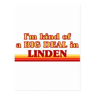 I am kind of a BIG DEAL in Linden Postcard