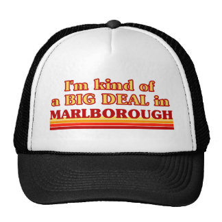 I am kind of a BIG DEAL in Marlborough Hats