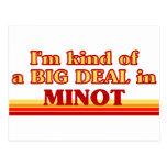 I am kind of a BIG DEAL in Minot Postcard