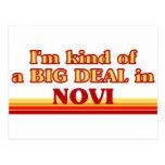 I am kind of a BIG DEAL in Novi Postcards