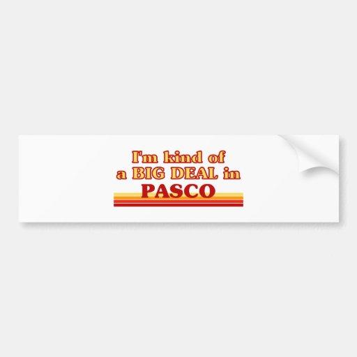 I am kind of a BIG DEAL in Pasco Car Bumper Sticker