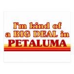 I am kind of a BIG DEAL in Petaluma Postcard