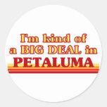 I am kind of a BIG DEAL in Petaluma Stickers