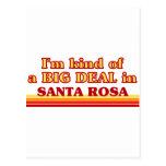 I am kind of a BIG DEAL in Santa Rosa Postcard