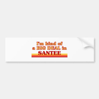 I am kind of a BIG DEAL in Santee Car Bumper Sticker
