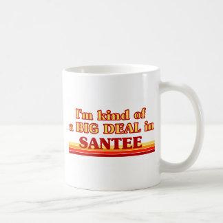 I am kind of a BIG DEAL in Santee Coffee Mugs