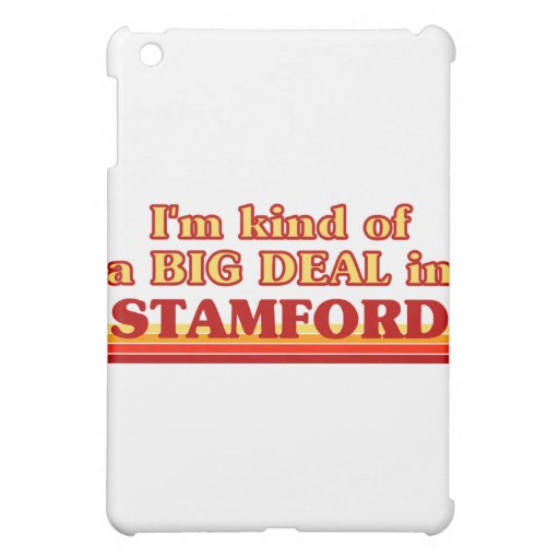 I am kind of a BIG DEAL in Stamford iPad Mini Cover
