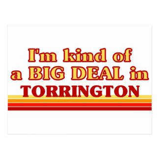 I am kind of a BIG DEAL in Torrington Postcard