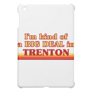 I am kind of a BIG DEAL in Trenton Cover For The iPad Mini