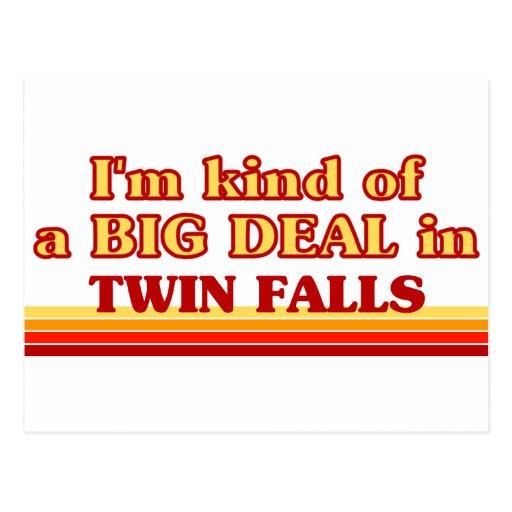 I am kind of a BIG DEAL in Twin Falls FALLS Post Card