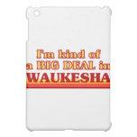 I am kind of a BIG DEAL in Waukesha iPad Mini Cases
