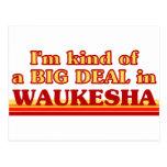 I am kind of a BIG DEAL in Waukesha Postcard