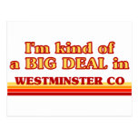 I am kind of a BIG DEAL in Westminster Postcard
