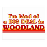 I am kind of a BIG DEAL in Woodland Postcard