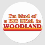 I am kind of a BIG DEAL in Woodland Classic Round Sticker