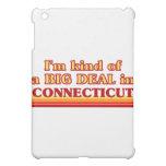 I am kind of a BIG DEAL on Connecticut iPad Mini Cases