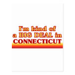 I am kind of a BIG DEAL on Connecticut Postcards