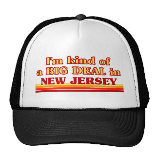 I am kind of a BIG DEAL on New Jersey Mesh Hat