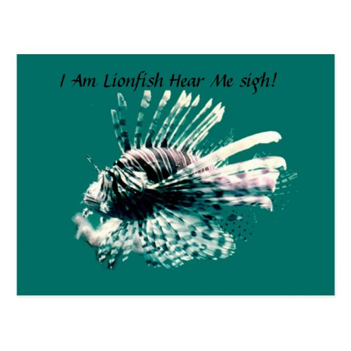 I Am Lionfish Here Me Roar Post Card