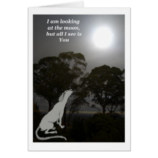 I am looking at the moon greeting card