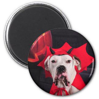 I am not a Devil Dog! Magnet