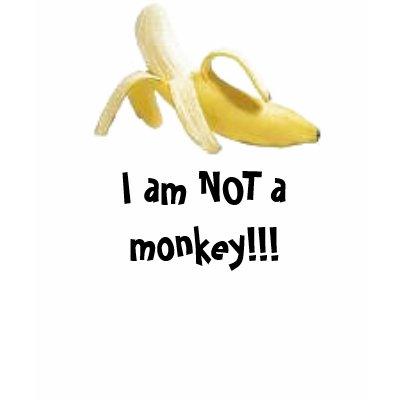 http://rlv.zcache.com/i_am_not_a_monkey_tshirt-p235198298841531840yk6v_400.jpg
