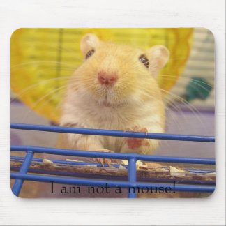 I am not a mouse! mouse pad