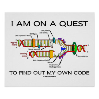 I Am On A Quest To Find Out My Own Code DNA Humor Print