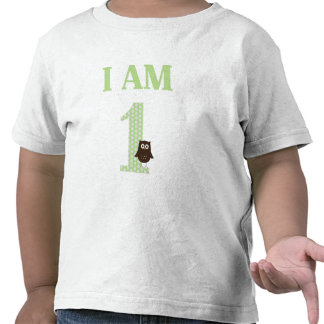 I AM ONE Birthday Owl T-Shirt