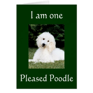 """I AM ONE PLEASED POODLE"" THANK YOU GREETING CARD"
