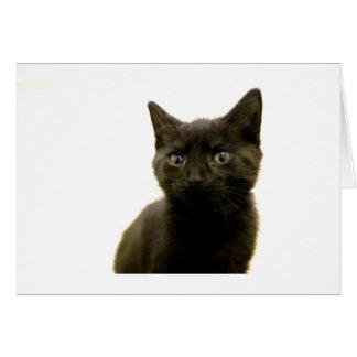 I Am Ophan Pleez Take Me Home Card