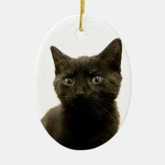 I Am Ophan Pleez Take Me Home Ceramic Ornament