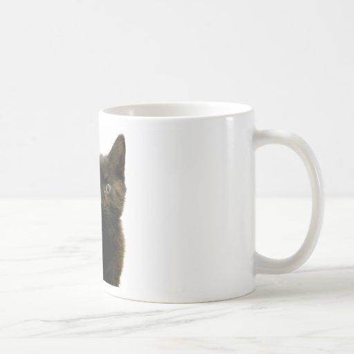 I Am Ophan Pleez Take Me Home Coffee Mug