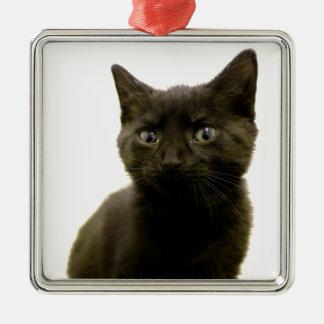 I Am Ophan Pleez Take Me Home Metal Ornament