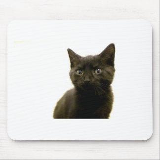 I Am Ophan Pleez Take Me Home Mouse Pad
