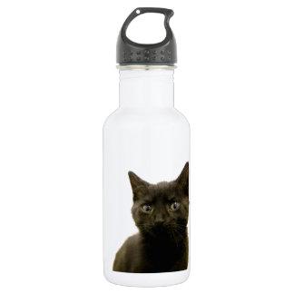 I Am Ophan Pleez Take Me Home Water Bottle