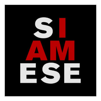 I AM SIAMESE POSTER