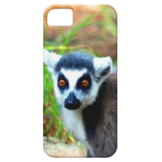 I am small but cute Catta Lemur Case For iPhone 5/5S