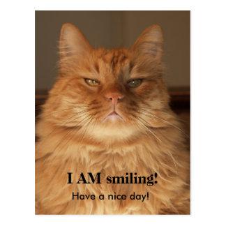 I Am Smiling Cat Post Card
