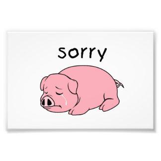 I am Sorry Crying Weeping Pink Pig Card Mug Button Photo Art
