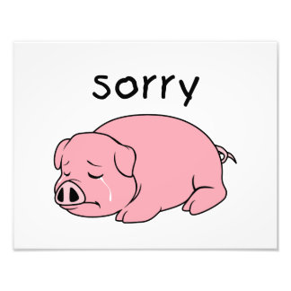 I am Sorry Crying Weeping Pink Pig Card Mug Button Photo