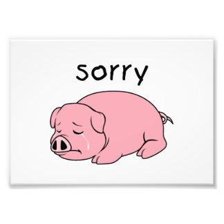 I am Sorry Crying Weeping Pink Pig Card Mug Button Photographic Print