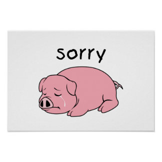 I am Sorry Crying Weeping Pink Pig Card Mug Button Posters